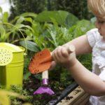 Piccoli giardinieri! Coltiviamo un piccolo giardino o un orto nel nido