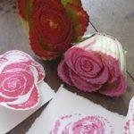 Le rose nell'insalata: laboratorio munariano con la frutta e la verdura