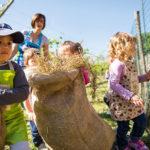 L'agrinido: un servizio innovativo