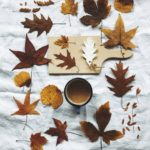 Laboratori e letture di ottobre